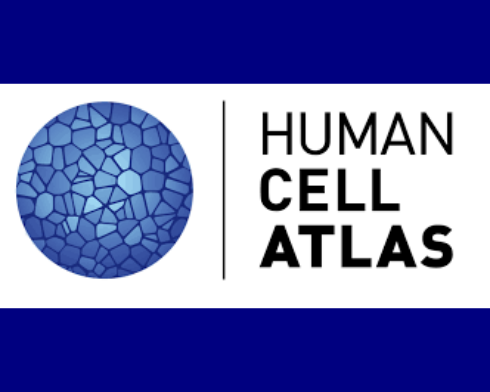 human cell atlas2
